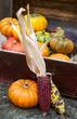 Herbstdekoration aus Kürbissen und Maiskolben