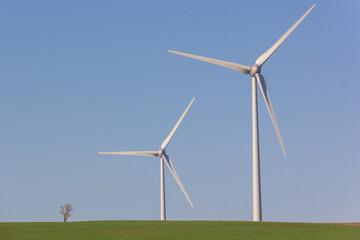 Arbre et duo d'éolienne