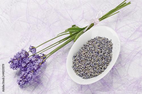 Lavender flowers (Lavendelblüten)