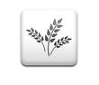 Boton cuadrado blanco simbolo organico