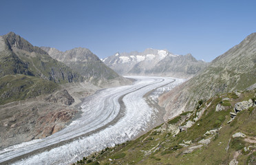 Aletch glacier in summer