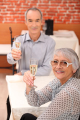 Elderly couple toasting each other in restaurant