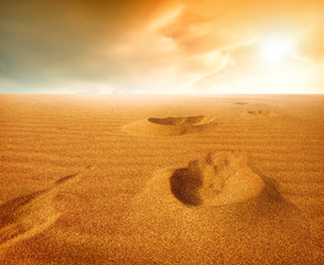 Footprints on sand dune, Sahara Desert