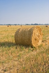 haystack on a  summer field