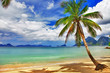 beautiful relaxing tropical scenery