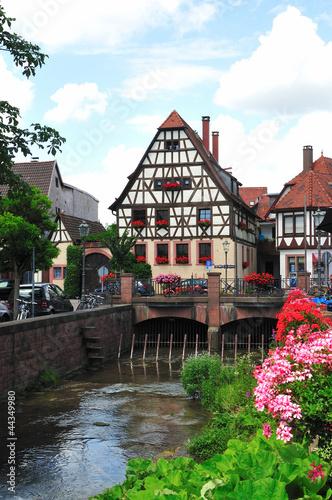 Weingarten in Baden