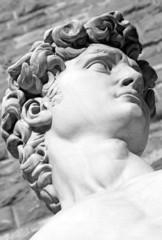 detail of  famous italian sculpture -  David by Michelangelo, bl