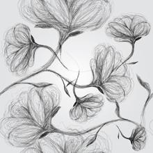 Chien rose sauvage / motif noir et blanc transparent