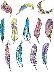 Motley feathers