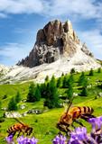 Fototapety Dolomiti Italia - Passo Giau