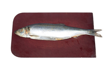 Herring on the board on a white background