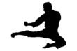 A silhouette of a karate jump