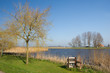 Dutch landscape on island