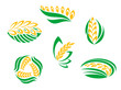 Symbols of cereal plants