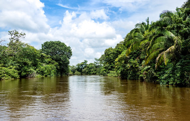 Frio River in Costa Rica jungle.