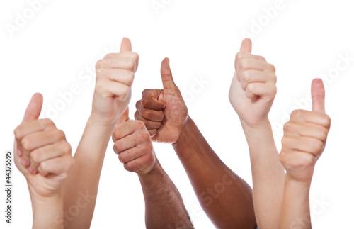 Viele Hände zeigen Daumen hoch