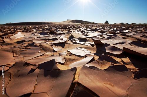 Drought land - 44377131