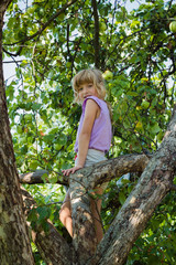 Little girl climbed into a tree