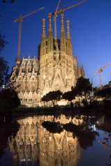 Sagrada familia vertical view at night