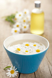 camomile flowers and essential oil
