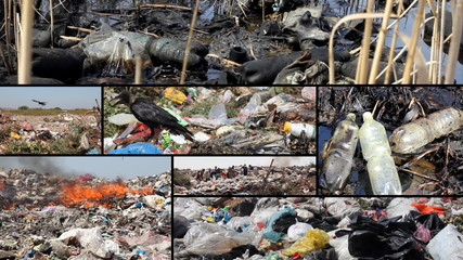 Pollution, dumping of garbage, split screen
