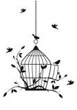 Ptaki wyfruwające z klatki, wektor