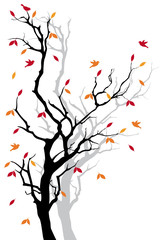 Autumn tree with falling leaves, vector