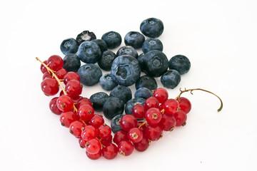 mirtilo frutas