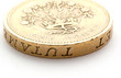 pound coin close-up