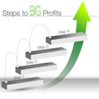 Steps to big Profits Chart