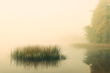 misty autumn morning on a lakeside