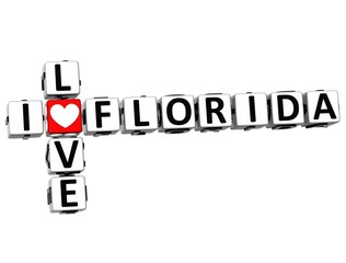 3D I Love Florida Crossword
