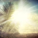 grunge palm-9 - 44402797
