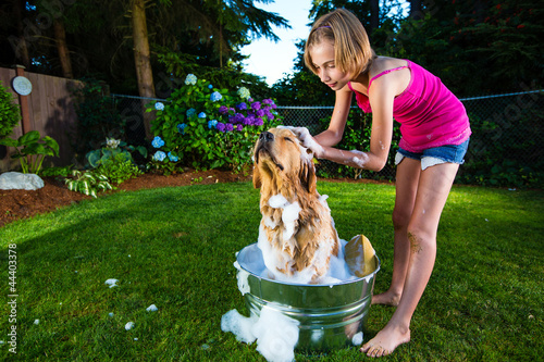 Young girl giving her dog a bath