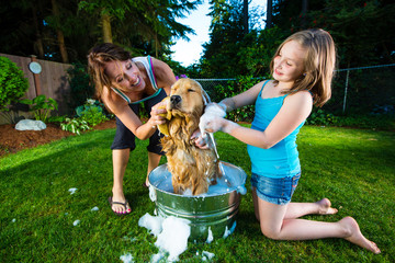 Giving the dog a bath outside