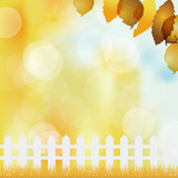fallen leaves background with fence