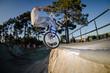 BMX Bike Stunt tap