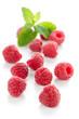 Ripe red raspberry