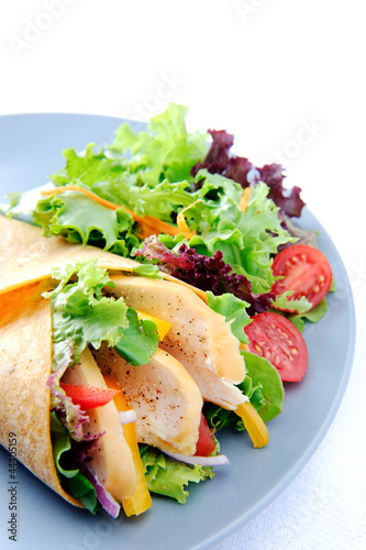 Chicken wrap on plate with side salad