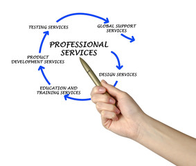 Diagram of professional services