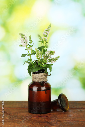 Essential oil and mint on green background close-up