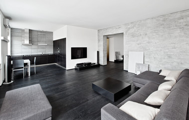 Modern minimalism drawing-room interior in black and white