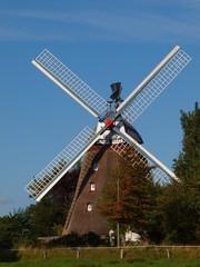 Mühle 6