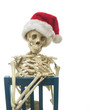 Skeleton with a Santa Hat