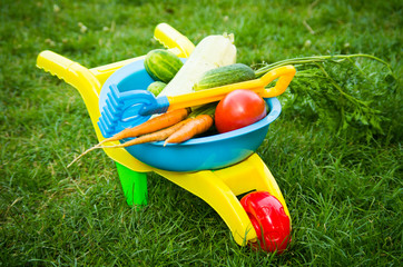 Toy barrow with vegetables