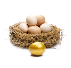 Golden egg in front of normal eggs puted in a nest.