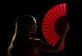 Fototapety Flamenco artist