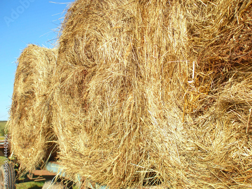 Three rolls of hay