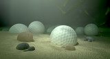 Golf Balls In Water Hazard