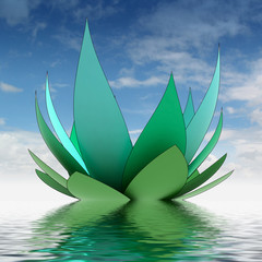 one nice turquoise waterlilly blossom on water level with sky